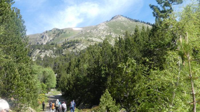 Puig del Pam